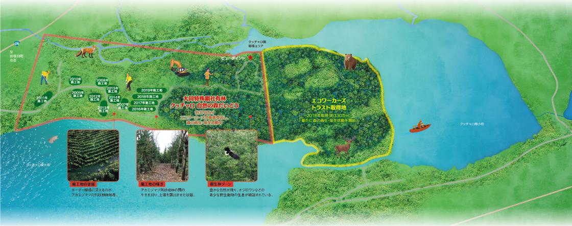 森のマップ